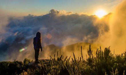 A importância de estar em contato com a natureza