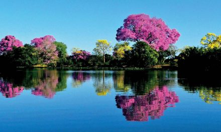 Destinos imperdíveis no Brasil
